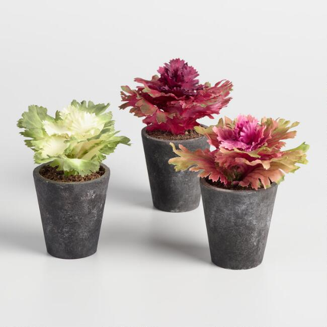 Mini Faux Kale Flowers in Pots Set of 3