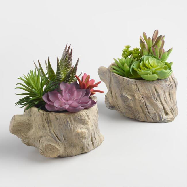 Faux Succulents on Logs Set of 2 | World Market