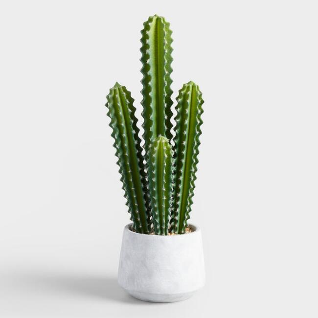 Faux Potted Senita Cactus