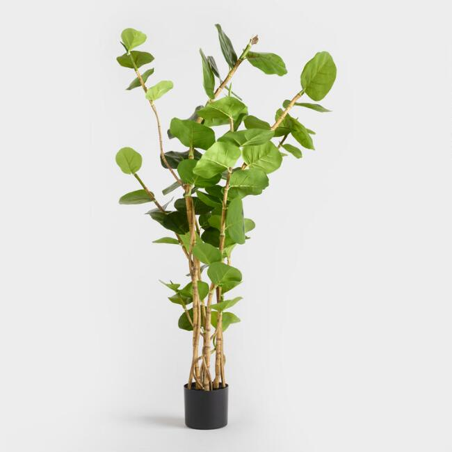5 Ft Faux Eva Sea Grape Plant