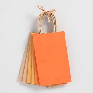 Small Orange Kraft Gift Bags 6 Count