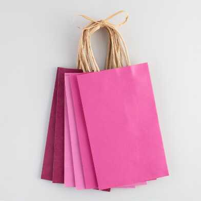Small Pink Kraft Gift Bags 6 Count