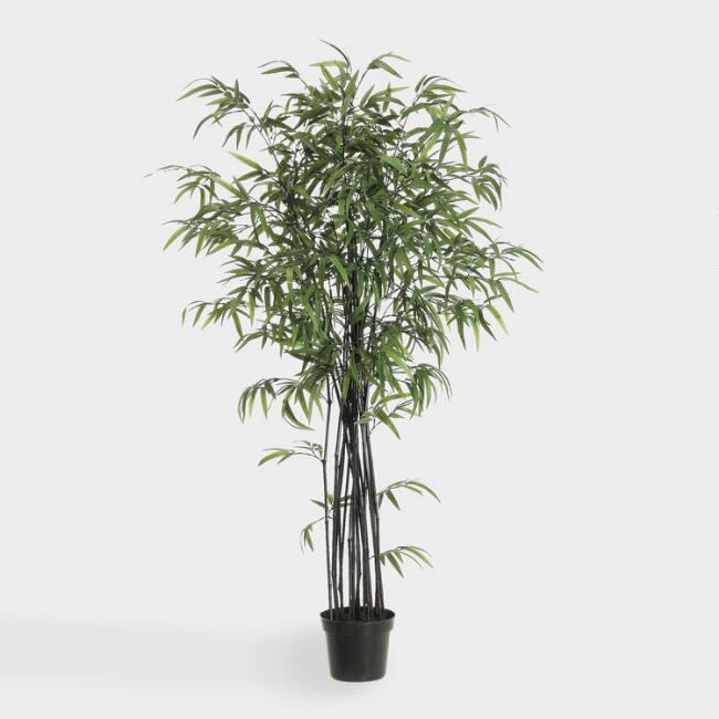 Faux Black Bamboo Plant