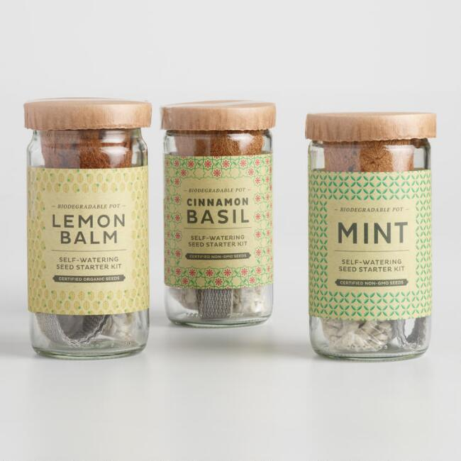 Modern Sprout Cocktail Seed Starter Kit 3 Pack