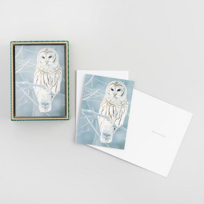 Owl Photo Boxed Holiday Cards Set of 16