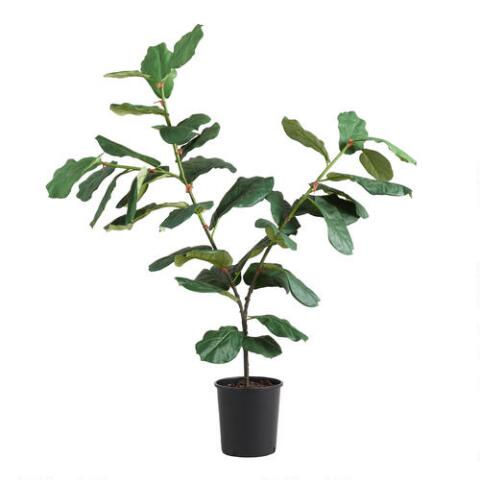 Faux Fiddle Leaf Fig Plant Previous V4 V1