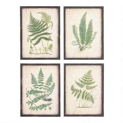 Fern Framed Burlap Wall Art Set Of 4