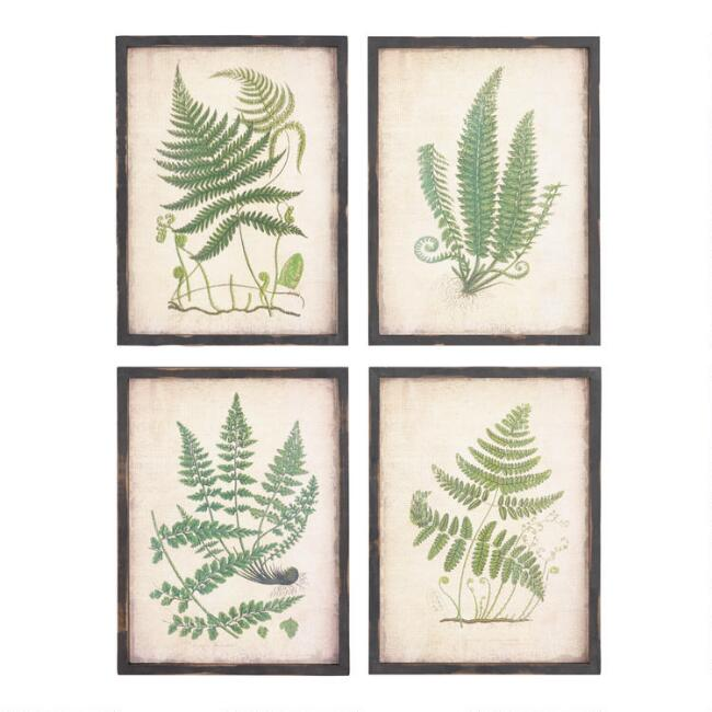 Fern Wall Art Set of 4 | World Market