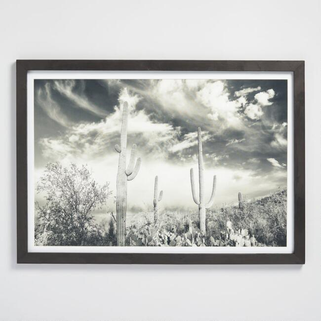 Black and White Cactus Photograph Wall Art