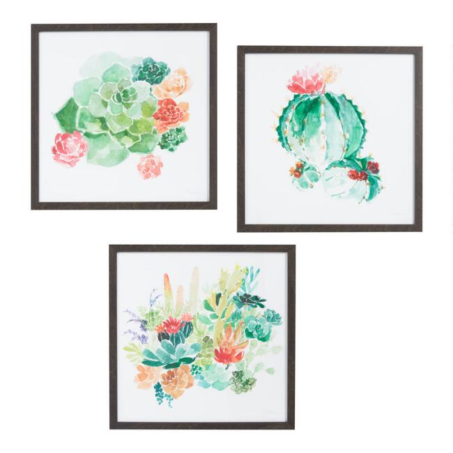 Watercolor Succulents By Anna Dusza Framed Wall Art 3 Piece