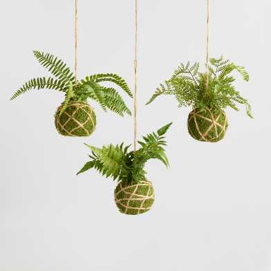 Faux Kokedama Fern Hanging Decor Set of 3
