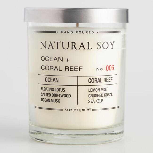 Ocean and Coral Reef Filled Soy Candle