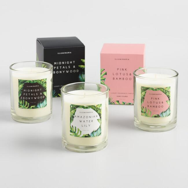 Tropical Filled Jar Candle Collection