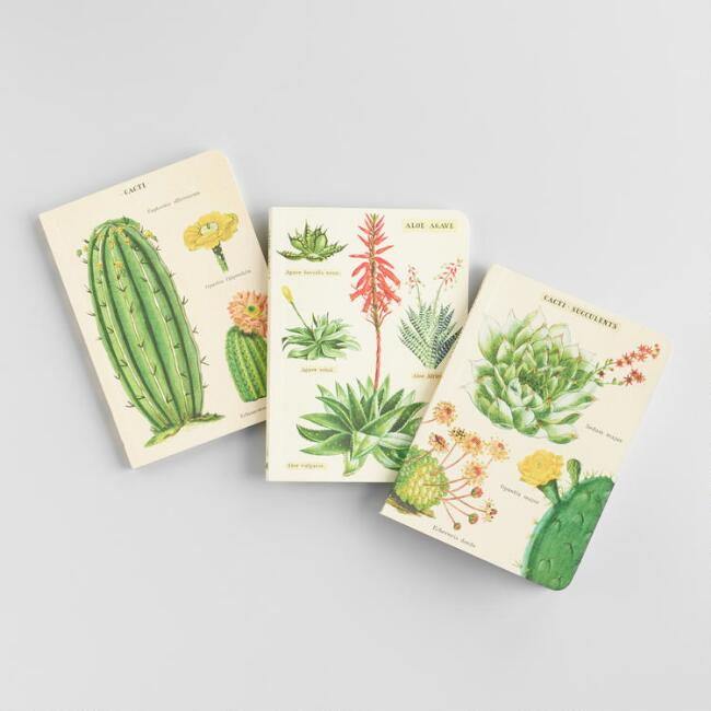 Mini Cacti and Succulents Journals Set of 3