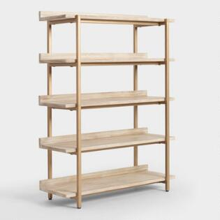Bookshelves Bookcases Ladder