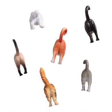Cat Butt Magnets 6 Pack
