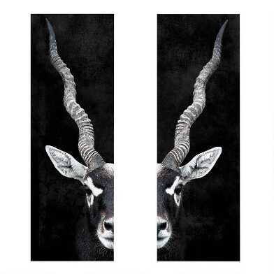 Antelope Portrait Diptych Canvas Wall Art 2 Piece