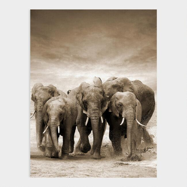 Sepia Elephant Herd Canvas Wall Art