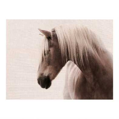 Magnificent in Sepia Canvas Wall Art