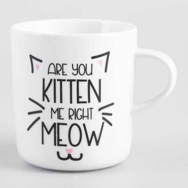 Are You Kitten Me Right Meow Coffee Mug