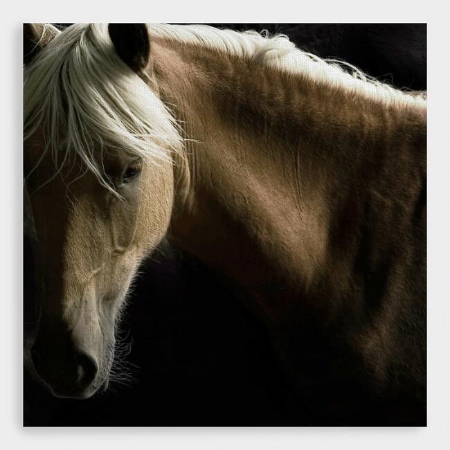 Spirit Horse by Tony Stromberg Canvas Print Wall Art