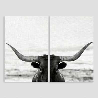 Longhorn Stare Diptych Canvas Wall Art 2 Piece