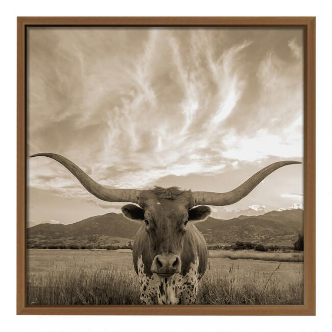 Bull Sighting Framed Print Wall Art