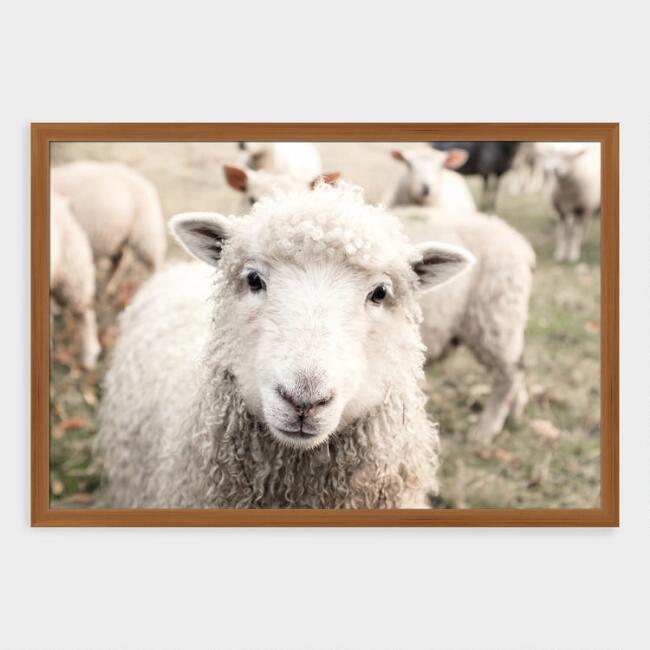 Sheep In The Meadow Framed Print Wall Art