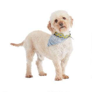 32ade8c6 Gifts For Pets and Pet Lovers - Pet Gifts, Dog Gifts | World Market