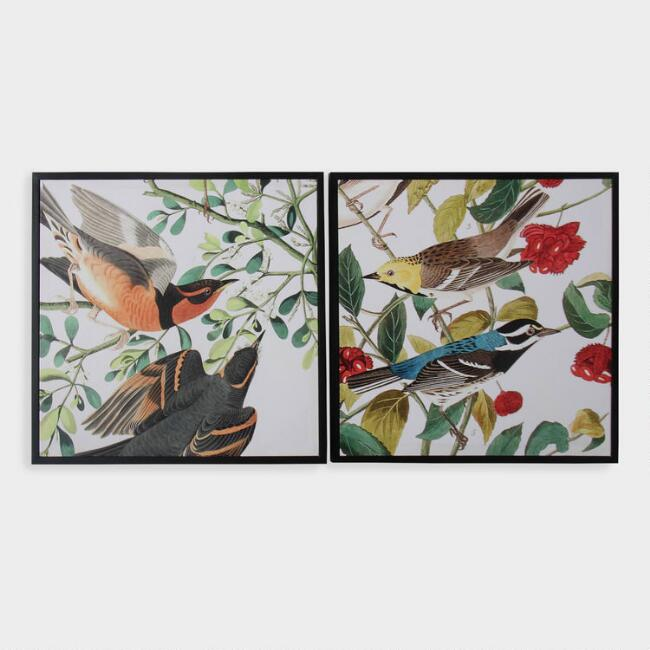 Audubon Birds By Jean Rabin Framed Wall Art Set Of 2
