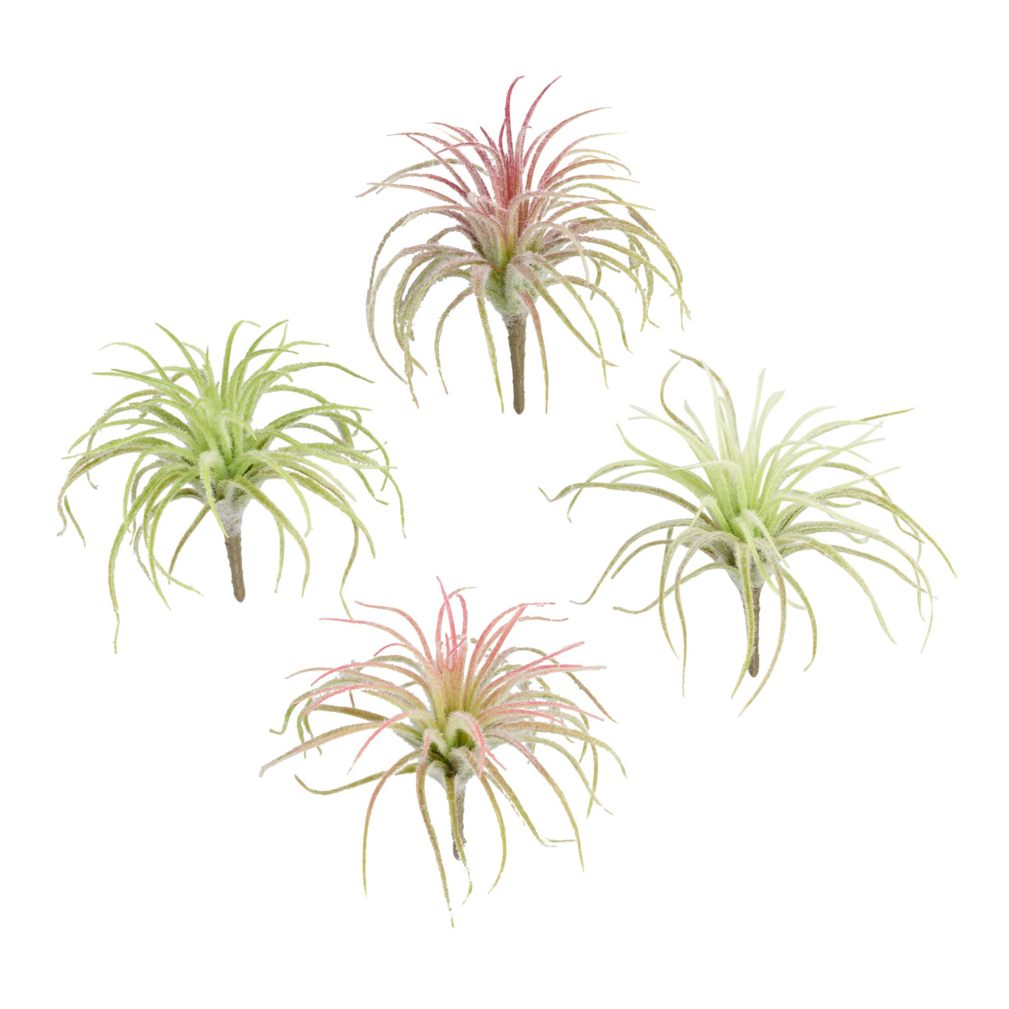 Flocked Faux Mini Air Plant Picks Set of 4 by World Market