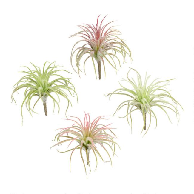 Flocked Faux Mini Air Plant Picks Set of 4