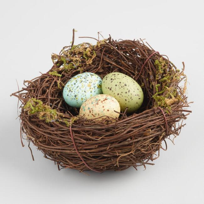 Natural Fiber Bird Nest with Eggs
