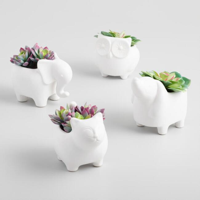 Faux Succulents in Ceramic Animal Planters Set of 4