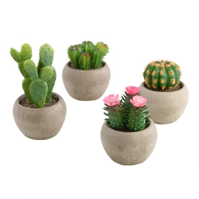 Faux Cacti in Dark Cement Pots Set of 4