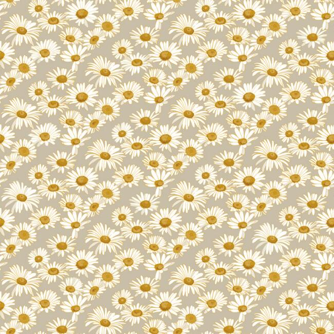 Field of Daisies Peel and Stick Wallpaper