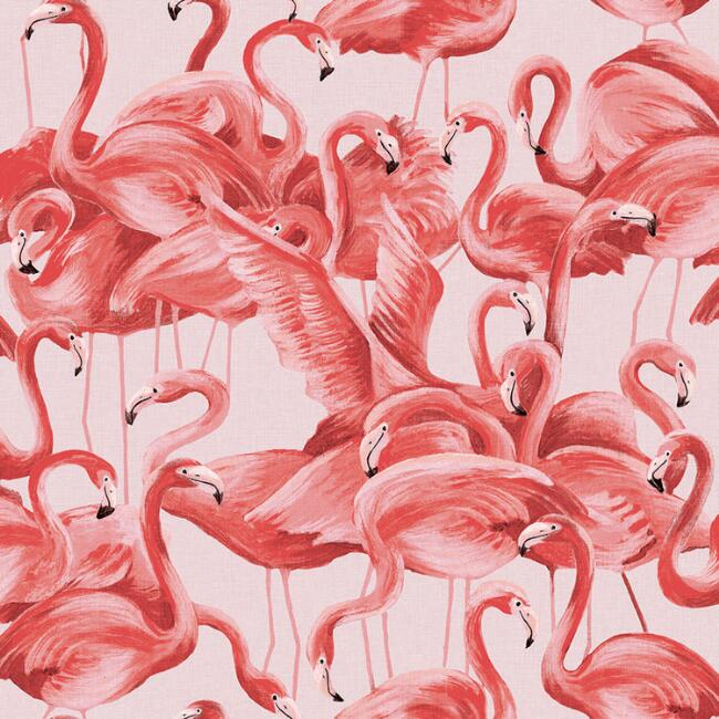 Flamingo Gathering Peel and Stick Wallpaper