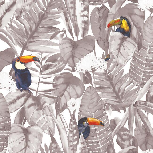 Hiding Toucan Peel and Stick Wallpaper