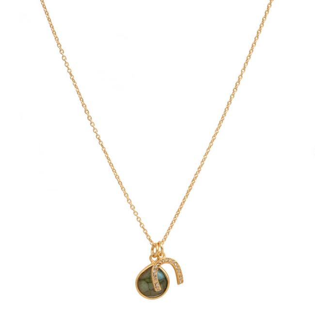 Gold Labradorite and Horseshoe Pendant Necklace