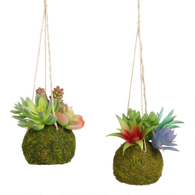 Faux Succulent Kokedama Hanging Decor Set of 2