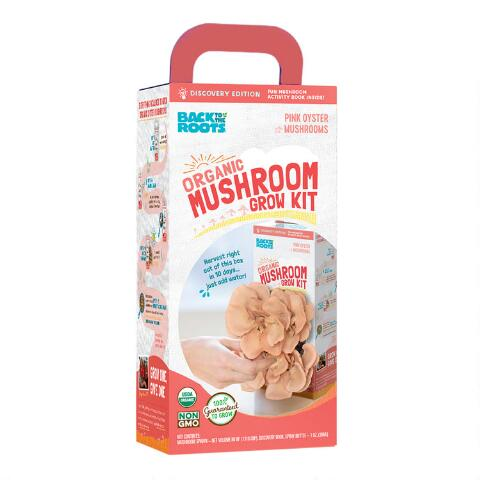 Back To The Roots Organic Pink Mushroom Grow Kit