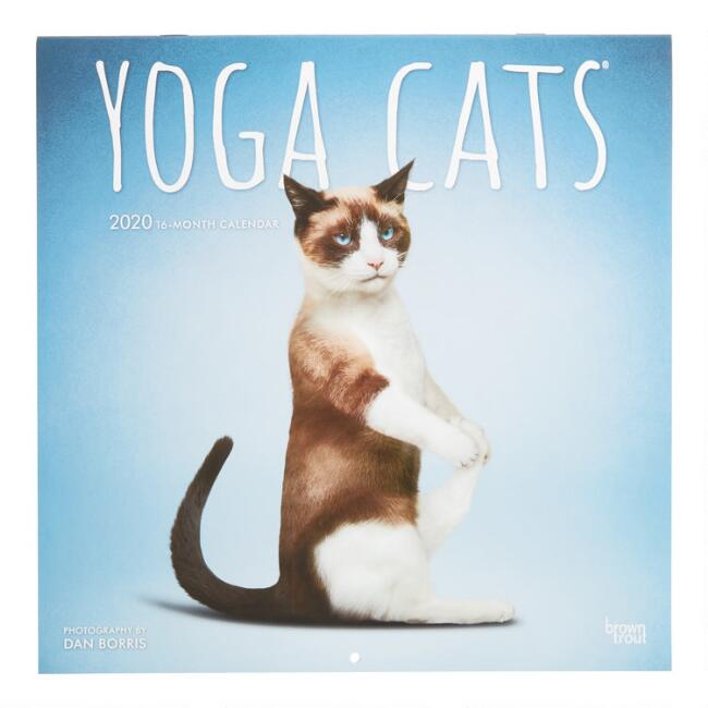 Yoga Cats 2020 Wall Calendar