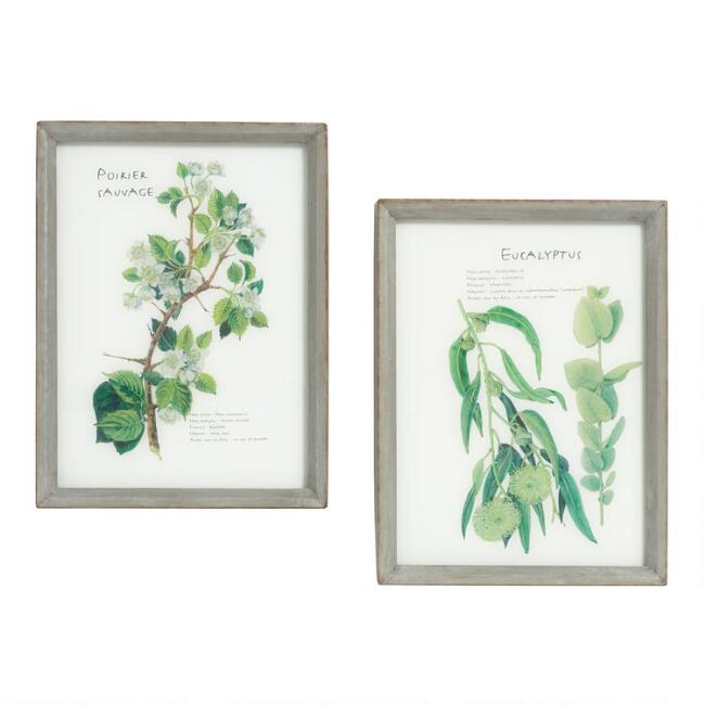 French Botanical Glass and Metal Framed Wall Art Set of 2