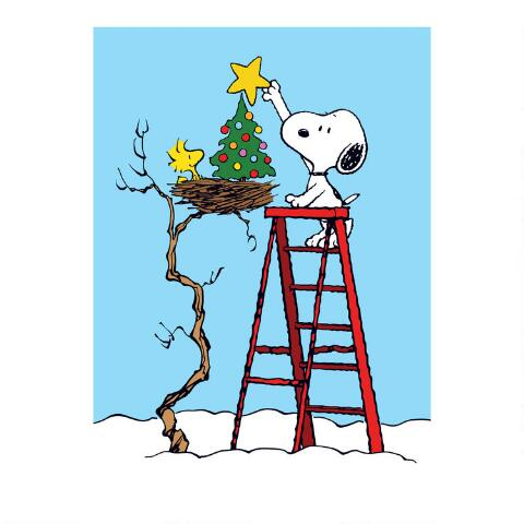 Snoopy Christmas Cards.Snoopy On A Ladder Boxed Christmas Cards Set Of 15