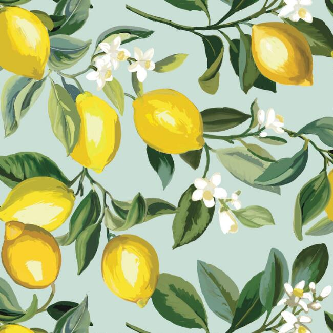 Light Blue and Yellow Lemon Peel and Stick Wallpaper