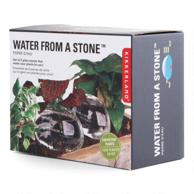 Kikkerland Water from a Stone Planter Watering Globes 2 Pack