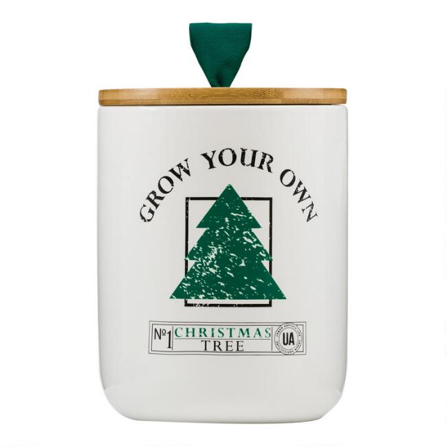 Urban Agriculture Grow Your Own Christmas Tree Kit