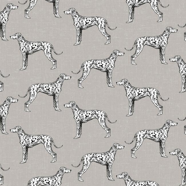 Gray Dalmatian Sketch Peel and Stick Wallpaper