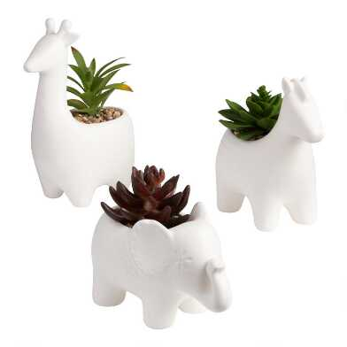 Faux Succulents In Ceramic Animal Planters