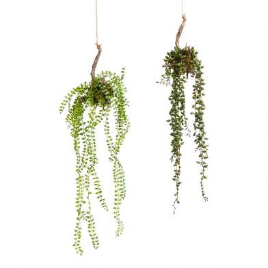 Faux Succulents On Twigs Hanging Decor Set of 2
